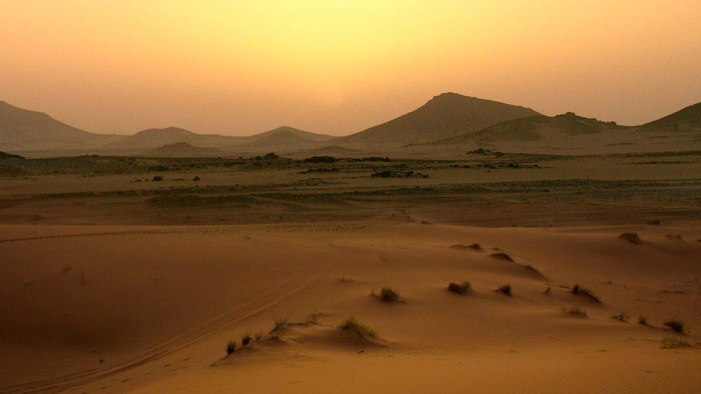 Desert Tours in Eilat